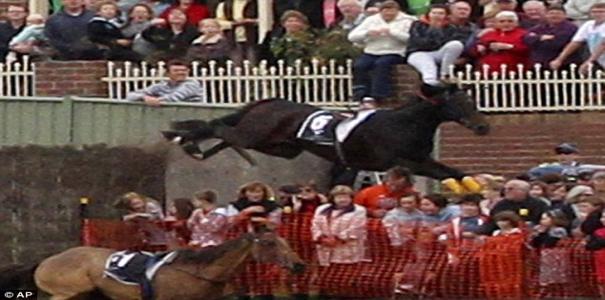 Cavalo salta barreira e derruba espectadores